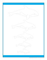 Jeux des grandeurs-Les baleines