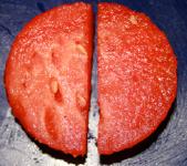 Jouer avec le melon d'eau-3