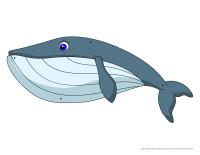 Les baleines à enfiler
