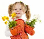 Les bienfaits des plantes dans vos locaux-4
