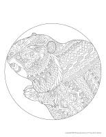 Mandalas-Jour de la marmotte
