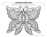 Mandalas-Papillons