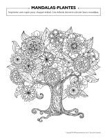 Mandalas-Plantes