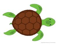 Modèle-tortue marine
