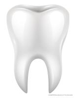 Modèles-La sante dentaire