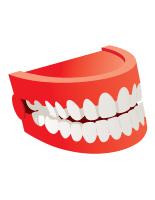 Modèles-Le dentiste