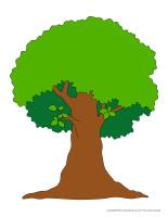Modèles-Les arbres-1