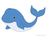 Modèles-Les baleines