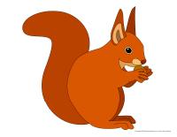 Modèles-Les écureuils