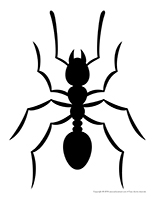 Modèles-Les fourmis