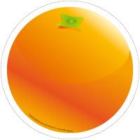 Modèles-Les fruits exotiques
