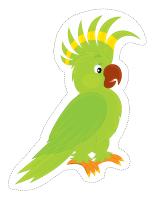Modèles-Les perroquets