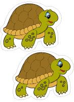 Modèles-Les tortues