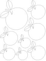 Modèles-pommes-NB