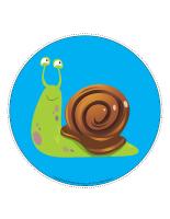 Mon chemin d'escargots