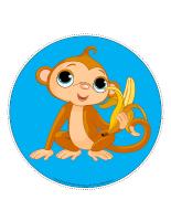 Mon chemin de singes