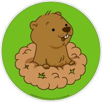 Mon chemin du jour de la marmotte