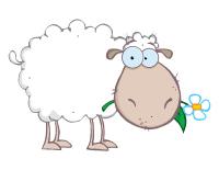 Moutons à lacer