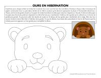 Ours en hibernation