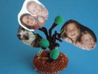 Petit arbre généalogique-8
