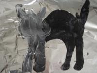 Petit chaton gris-5