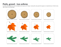 Petit-grand-Les arbres