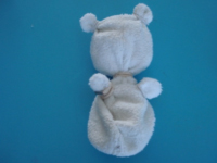 Petit ours polaire-5