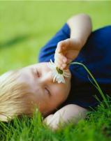 Petites astuces pour stimuler les sens de par votre environnement-photo