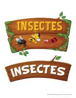 Photomaton-Insectes