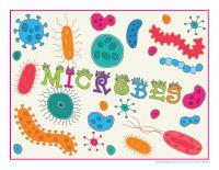 Photomaton-Les microbes-2