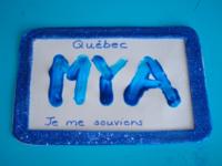 Plaque d'immatriculation bleue-1