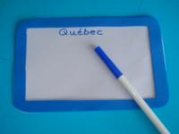 Plaque d'immatriculation bleue-5