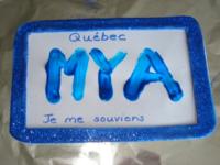 Plaque d'immatriculation bleue-7