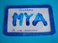 Plaque d'immatriculation bleue-8