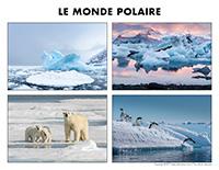 Poni découvre et présente-Le monde polaire