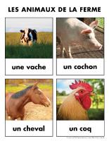 Poni découvre et présente-Les animaux de la ferme