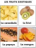 Poni-découvre et présente-Les fruits exotiques