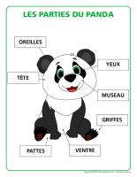 Poni découvre et présente-Pandas