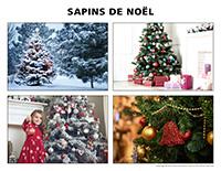 Poni découvre et présente-Sapin de Noël