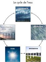 Poni présente - Le cycle de l'eau