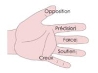 Pourquoi apprendre le nom des doigts-2