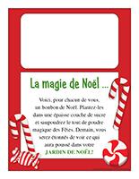 Recette-Jardin de Noël