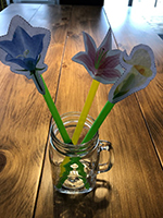 Reconnaitre les couleurs en jouant avec les fleurs-5