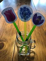 Reconnaitre les couleurs en jouant avec les fleurs-6