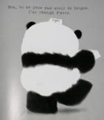 Sil vous plait-M Panda-4
