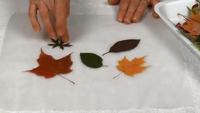Tableau feuilles-03