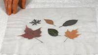 Tableau feuilles-06
