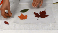 Tableau feuilles-07
