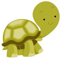 Touché la tortue