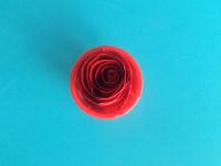 Une rose qui ne fanera pas-8